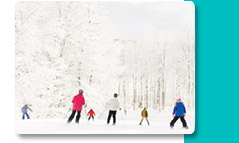 White Winter Scene with People Skiing