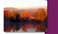 Fall Escapes in Bellaire