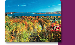 Our Fall Rates and Color are both Eye-Catching