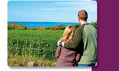 """Traverse City's Affordable """"Fab Fall"""" Specials"""