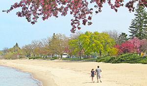 Beach in Spring